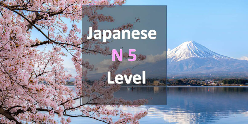 NNewJapanese Level N5 Free Learning